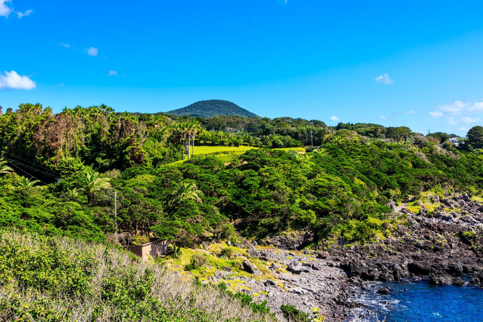 【下五島】GOTOCHARIで雄大な自然と独特の文化を満喫!-1