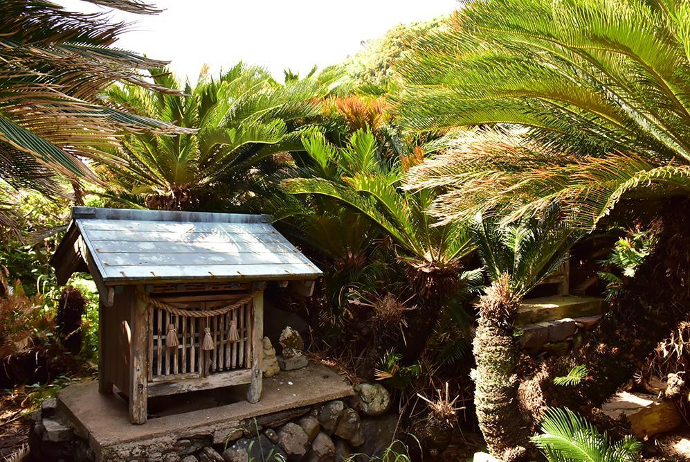 ここは海外か!? のどかな時間と豊かな自然が楽しめる「非日常の島」へ -9