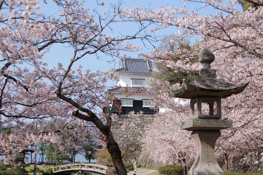 【中止】大村桜まつり-3
