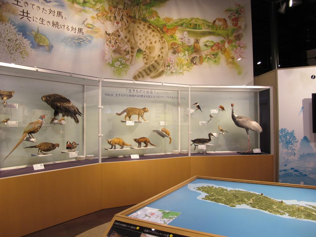 環境省 対馬野生生物保護センター-3
